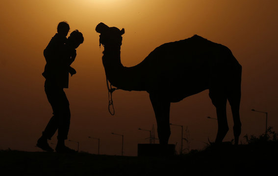 A man carrying a child on his back is silhouetted against the setting sun as he walks past a camel on the banks of river Yamuna in New Delhi