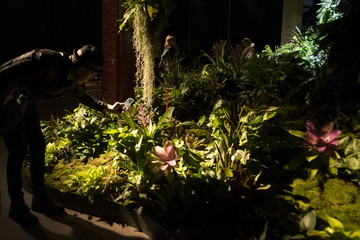 A man photographs plants at the Lowline Lab during opening weekend in Manhattan
