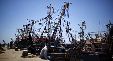Fishing boats anchor at a dock in Concepcion