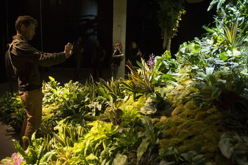 A man photographs the installation at Lowline Lab during opening weekend in Manhattan