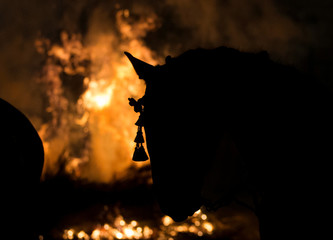 "A horse is silhouetted next to flames during the ""Luminarias"" annual religious celebration on the eve of Saint Anthony's day, Spain's patron saint of animals, in the village of San Bartolome de Pinares"