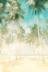 Coconut tree on the sky background-  - retro styled picture