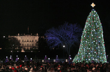 The National Christmas Tree is seen with the White House in the background after U.S. President Barack Obama and his family helped light it, in Washington