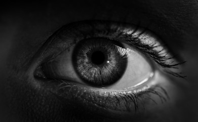 Macro shot of female human eye in black and white toned.