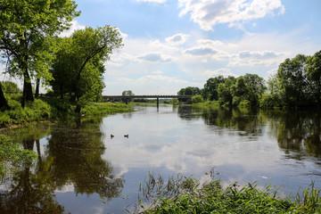 Warta river in Miedzychod