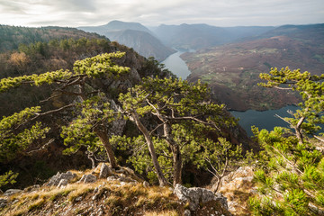 View from Tara mountain in Serbia, Europe. Drina river in the distance.