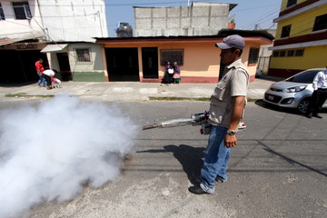 Municipal health worker fumigates as part of the city's efforts to prevent the spread of the Zika virus vector, the Aedes aegypti mosquito, in Guatemala City