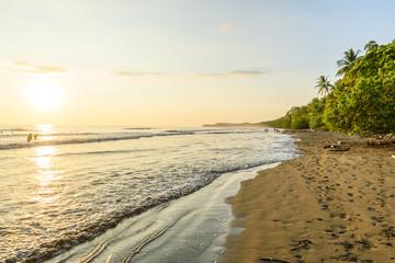 Sunset at paradise beach in Uvita, Costa Rica - beautiful beaches and tropical forest at pacific coast of Costa Rica - travel destination in central america