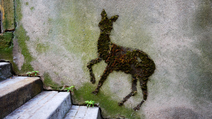 Doe street art. Outdoor art on the wall. Art in the city. Urban art