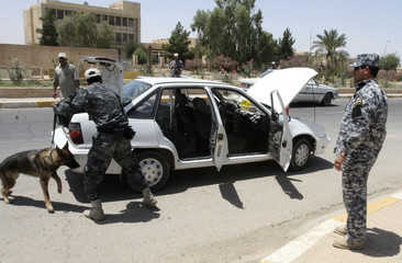 A policeman uses a bomb-sniffing dog to search a car at a security checkpoint in Tikrit