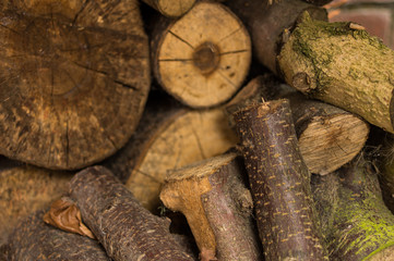 Cut logs in a wood pile