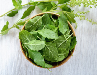 Basil leaves in a bowl