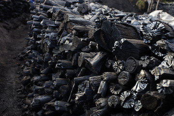 Wood charcoal making, forestry and forestry products
