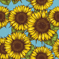 Sunflower vintage seamless pattern. Sunflower retro background. Vector illustration
