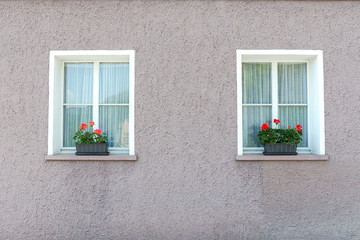 Two white windows with geraniums on the window bench and house lily colors