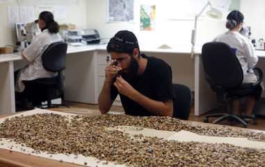 An employee of Shefa Yamim diamond exploration company sifts through rocks in search of precious stones at the firm's laboratory in Acre