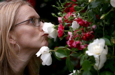 A woman sniffs a rose at the RHS Chelsea Flower Show in London, Britain