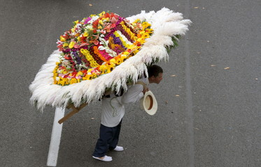"A man wearing a floral arrangement on his back takes part in the annual flower parade, in which flower growers known as ""silleteros"" present their floral arrangements, in Medellin"
