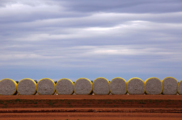 Bales of cotton sit in a paddock located in the Macquarie Valley Irrigation Area near Trangie