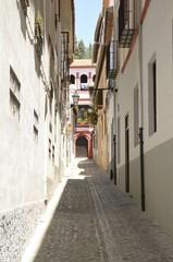 Charming narrow alley in Granada, Spain