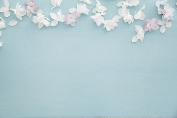 White syringa on baby blue wood