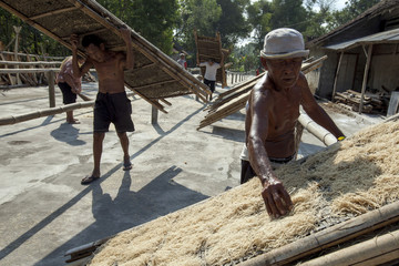 Worker dries noodles made from tapioca flour on wooden slats in Bantul, near the ancient city of Yogyakarta