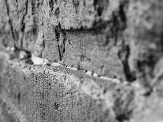 side view of huge stones of the wailing wall with a lot of prayer paper notes inserted between two stones. black and white photo