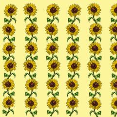 Sunflower  yellow background