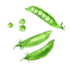 Green peas, isolated on white background, watercolor illustration