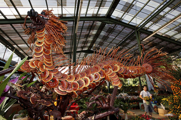 A two-metre long decorative dragon made out lingzhi mushroom heads is displayed for sale at a plant nursery in Singapore
