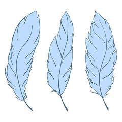 Blue bird feather line art set vector