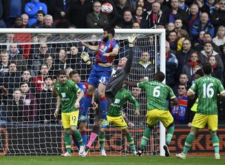 Crystal Palace v Norwich City - Barclays Premier League