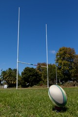 Rugby ball and post on grassy field against sky