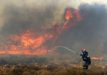 A Greek firefighter holds a fire hose as he runs to safer ground as a forest fire rages in Marathon near Athens