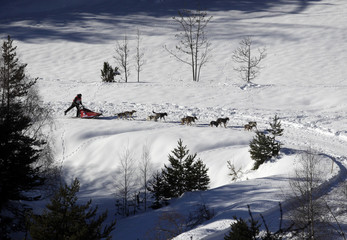 Musher Salva Luque of Spain competes with his dogs during the ninth and final stage of La Grande Odyssee sled dog race in Aussois