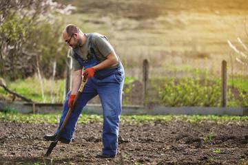 The gardener digs the garden with a shovel