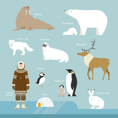 northpole animal and people flat design vector illustration