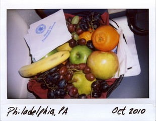 A bowl of fruit is seen on Air Force One as it takes U.S. President Barack Obama to a rally in Philadelphia