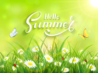 Lettering Hello Summer on green nature background