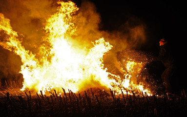 Anti-nuclear protestor set straw rolls on fire on a field in Laase near Gorleben to demonstrate against the Castor.