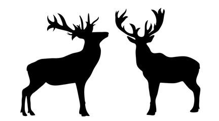 Vector silhouette of deer on white background.