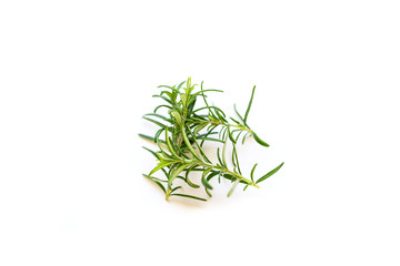 Fresh branches with leaves of organic rosemary isolated on a white background with a blur effect