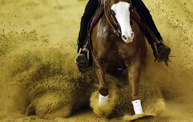 Heikes of U.S. riding Lil Gun Dunit competes in team reining competition and 1st individual qualifying at World Equestrian Games at the d'Ornano stadium in Caen