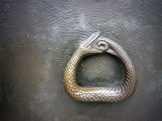 Ouroboros symbol photo. Snake snapped into his tail. Symbol of infinity