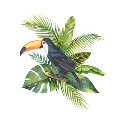 Watercolor bouquet of tropical leaves and the Toucan isolated on white background.
