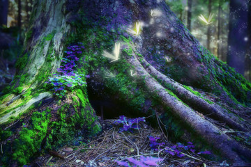 Enchanted forest with magic fireflies
