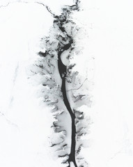 The Winter Spine
