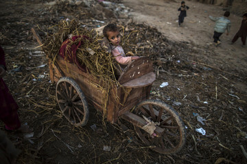 A boy sits on a cart in a slum on the outskirts of Islamabad