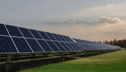 Solar panels face sunlight on green field
