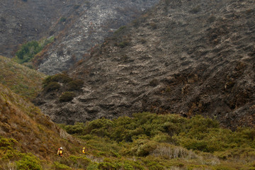 Firefighters keep watch to ensure fire does not spread from a smoldering canyon face to another at Garrapata State Park during the Soberanes Fire north of Big Sur, California